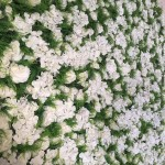 White & green flower wall