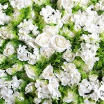 White & green flower wall 2 (1)